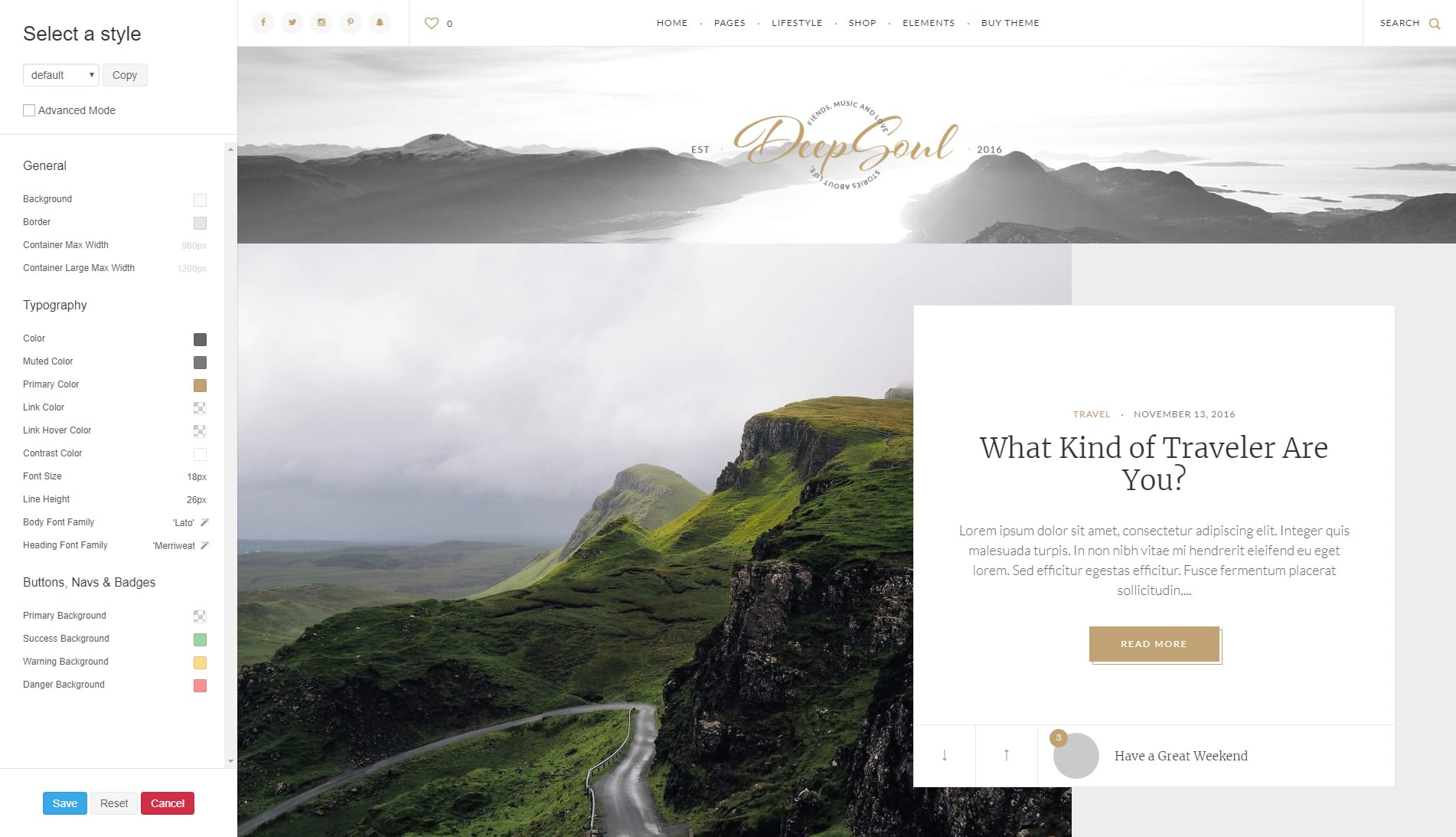 How to use a theme customizer correctly?   Elartica Themes Knowledge Base